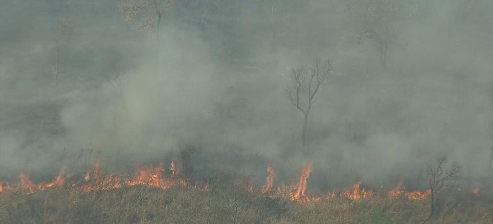 Moradores de Sabará inconformados denunciam incêndios em mata